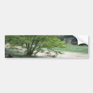 Woodland Bumper Sticker