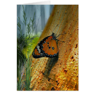 Woodland Butterfly Card