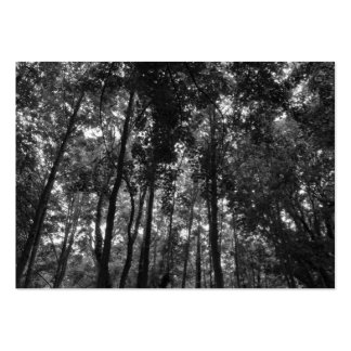 Woodland Canopy 02 BW Large Business Cards (Pack Of 100)