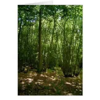 Woodland Card