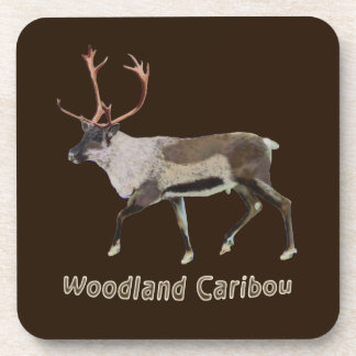 Woodland Caribou Beverage Coasters
