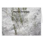 Woodland Christmas Cards