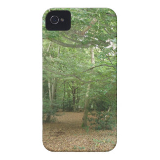 Woodland Clearing Blackberry Bold Case