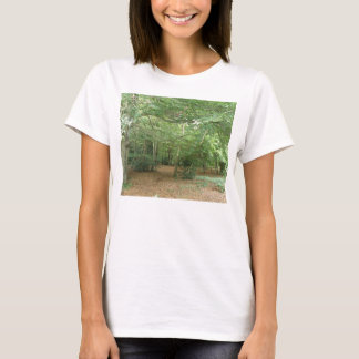 Woodland Clearing Ladies T Shirt
