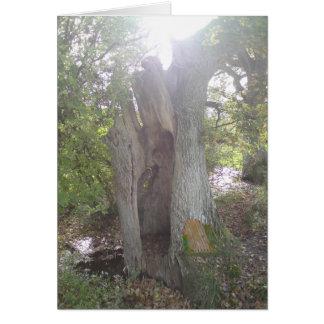 Woodland Faerie Door Card