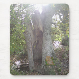 Woodland Faerie Door Mouse Pad