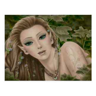 Woodland Fairies Postcard