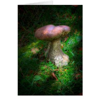 Woodland Fairy Mushroom blank notelet / card