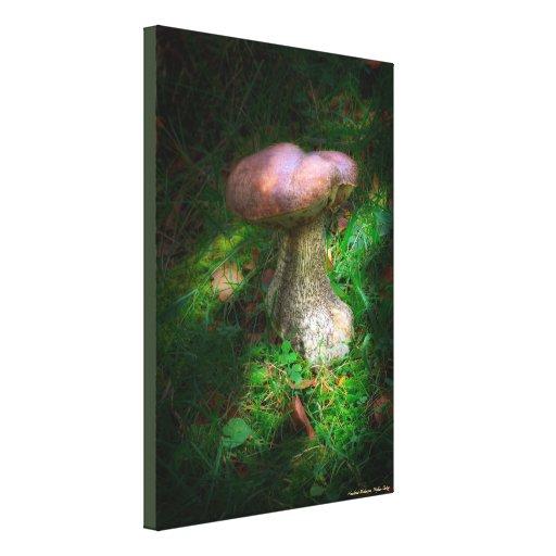 Woodland Fairy Mushroom - wrapped canvas