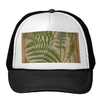 woodland foliage french botanical print fern trucker hat
