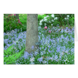 WOODLAND HILLSIDE COVERED WITH BLUE WILD FLOWERS CARD