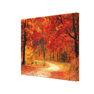 Woodland in Fall Canvas Print