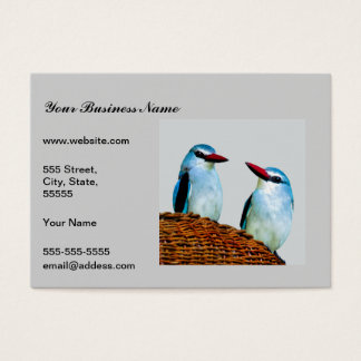 Woodland Kingfisher birds Business Card
