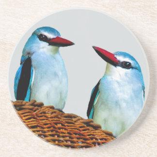 Woodland Kingfisher birds Sandstone Coaster