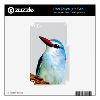 Woodland Kingfisher birds Skin For iPod Touch 4G