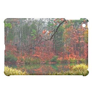 Woodland Landscape Art photo iPad case