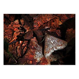 Woodland Moth ATC Large Business Card
