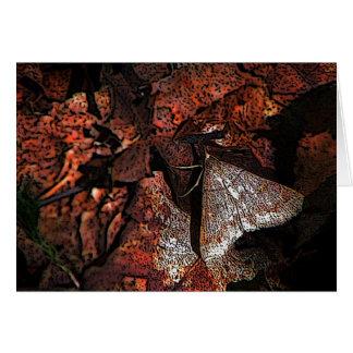 Woodland Moth Card