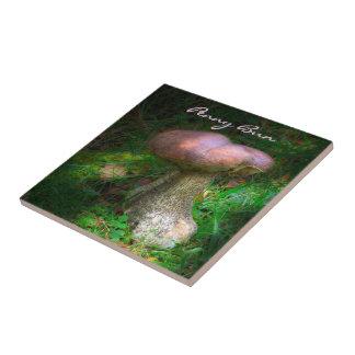 Woodland Mushroom - Penny Bun, Porcino Tiles