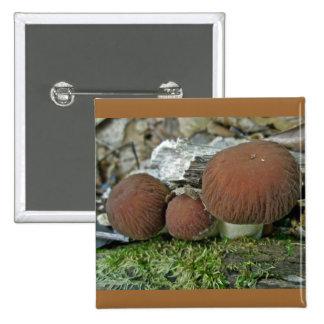 Woodland Mushrooms Coordinating Items Pin