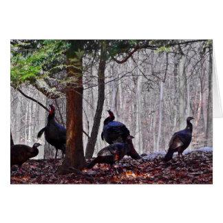 Woodland Note Card Turkeys