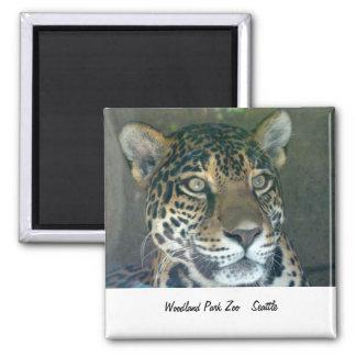 Woodland Park Zoo Cat Magnet