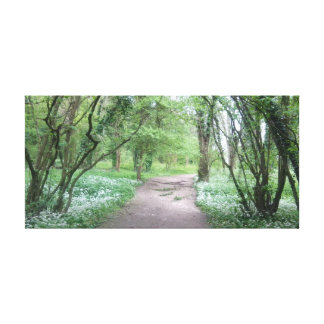 Woodland Path Canvas