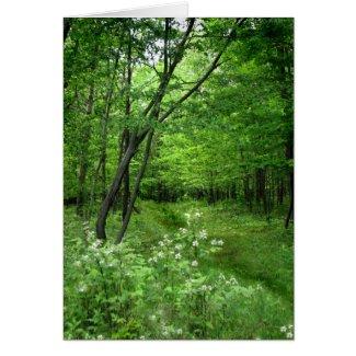 Woodland Path Earth Day zazzle_card