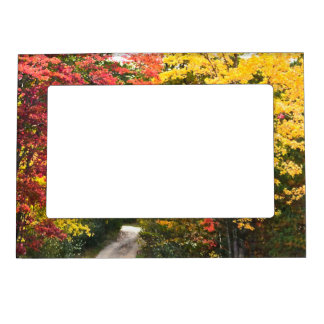 WOODLAND PATH IN AUTUMN MAGNETIC FRAME