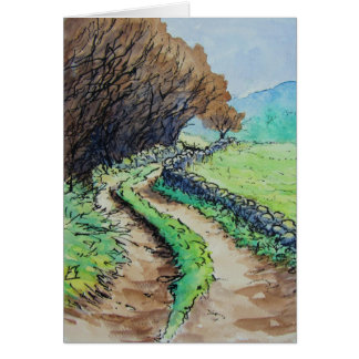 woodland path landscape drawing cards