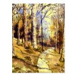 'Woodland Path' Postcard