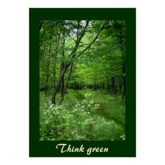 Woodland Path Think Green Poster
