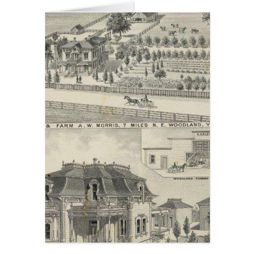 Woodland residences, farms cards