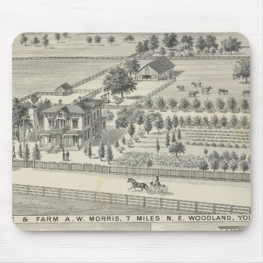 Woodland residences, farms mouse pad