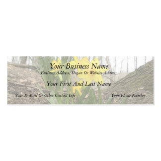 Woodland Scene - Daffodils Double-Sided Mini Business Cards (Pack Of 20)