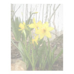 Woodland Scene - Daffodils Customized Letterhead