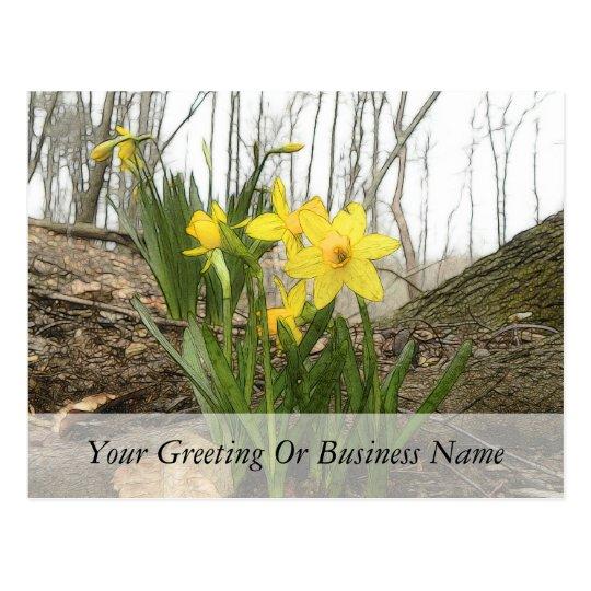 Woodland Scene - Daffodils Postcard