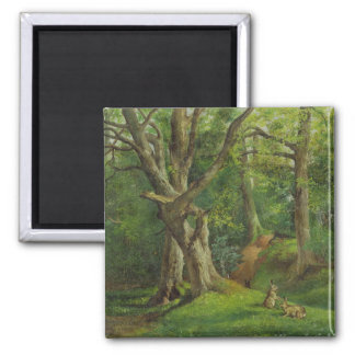 Woodland Scene with Rabbits, 1862 (oil on canvas) 2 Inch Square Magnet