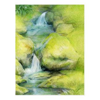 Woodland stream cascade postcard
