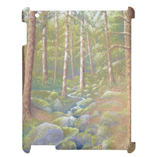 Woodland Stream Peak District Derbyshire iPad Case