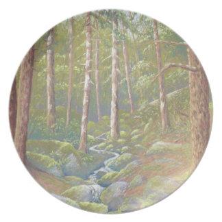 Woodland Stream, Peak District, Derbyshire Plate