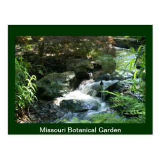 Woodland Stream Postcard