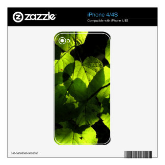WOODLAND SUNLIGHT DECAL FOR iPhone 4S