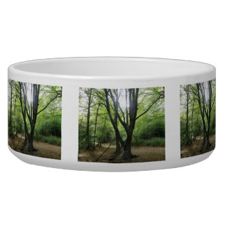 Woodland Sunshine Dog Bowl