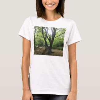 Woodland Sunshine Ladies T Shirt