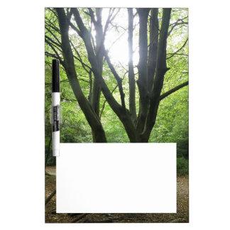 Woodland Sunshine Memo Board