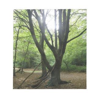 Woodland Sunshine Notepad