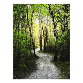 Woodland Trail Digital Painting Photographic Print
