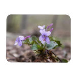 Woodland Violet Flexible Magnets