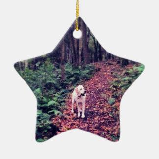 Woodland Walk Ceramic Ornament